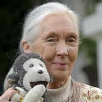 Jane Goodall's Roots and Shoots programme Jane Goodall's Roots and Shoots programme