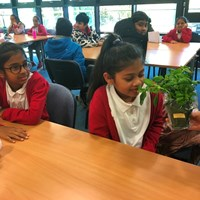 Rushey Mead 15 Children smelling a small herb plant